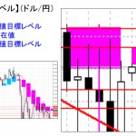■本日の重要目標値レベル: ドル円  1005