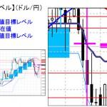 ■本日の重要目標値レベル: ドル円   1217