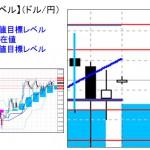■本日の重要目標値レベル: ドル円   1207
