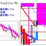 ■本日の重要目標値レベル: ドル円  0229